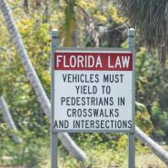 Why Should You Worry About Florida's Road Safety Laws?